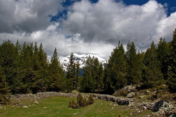 Montecarlo - фото 15