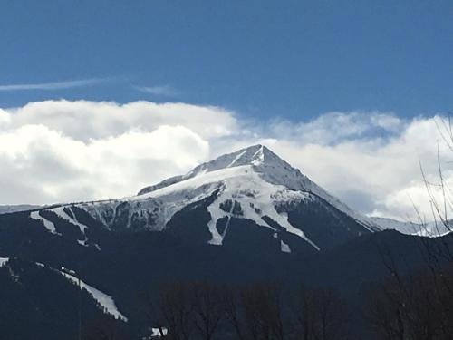 One Bedroom Appartment in Pirin 3 - фото 2