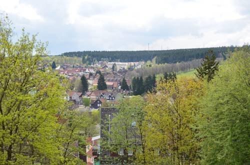 HarzSuite Braunlage - фото 8