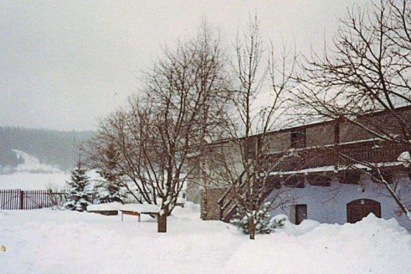 Holiday home Pravetin - фото 1