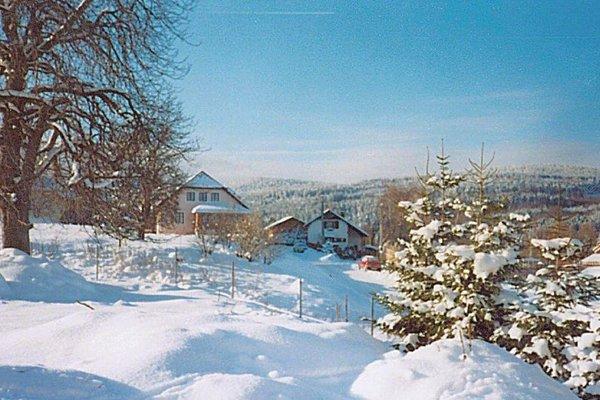 Holiday home Pravetin - фото 3