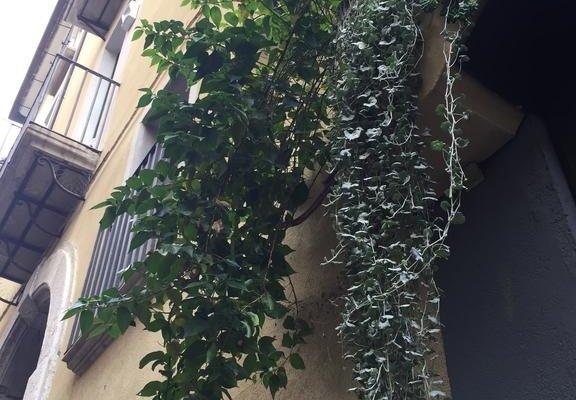 Le 8 Campane Salerno - фото 6