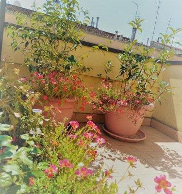 Appartamento Malu - фото 6