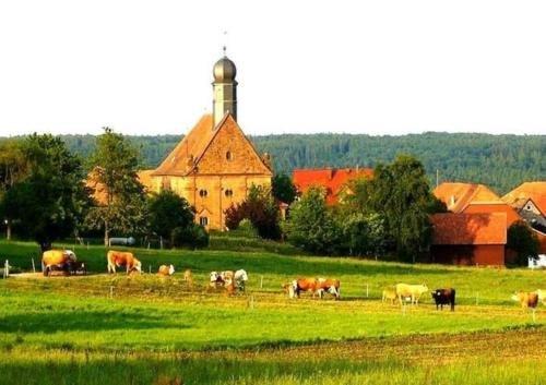 Gasthaus-Pension Zum Brandweiher - фото 16