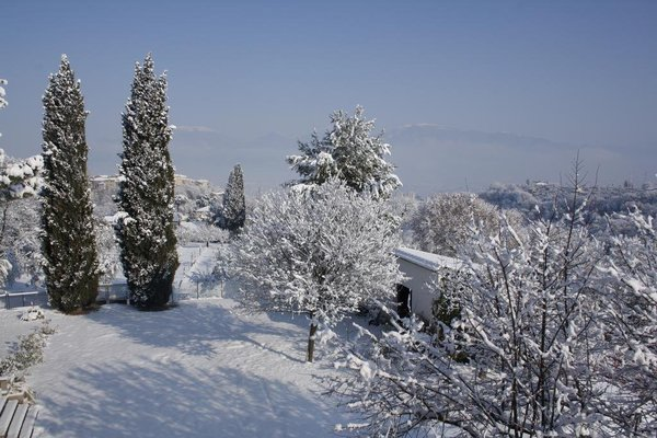 I Cipressi - фото 7
