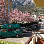 Villa Dei Tigli - фото 23