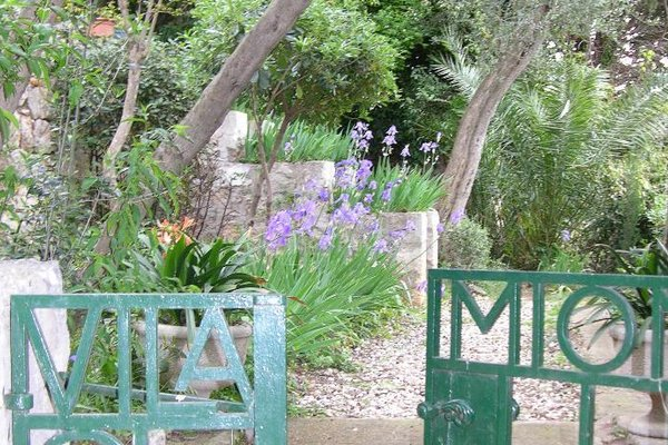 Villa Miomir - фото 5