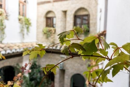 Casa Entropiqa - фото 23
