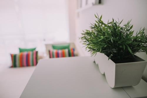 Apartamento Malagueta Playa - фото 5