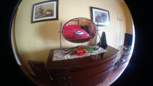 Movida Inn B&B - фото 5