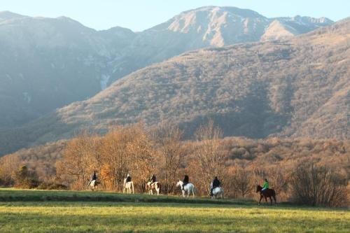 Agriturismo al Ranch - фото 16