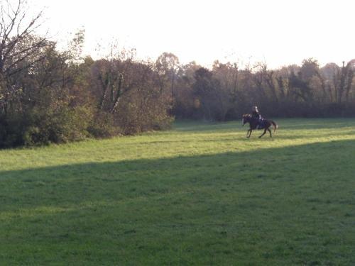 Agriturismo al Ranch - фото 9