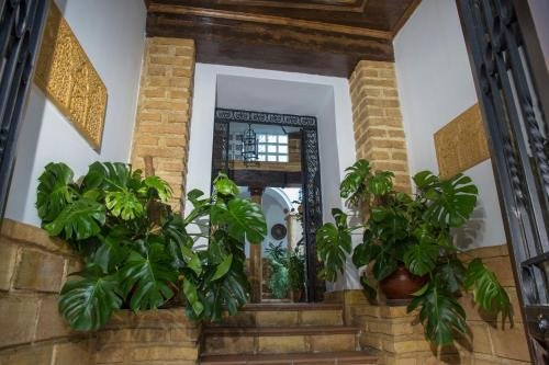 Apartamentos Patio Cordobes - фото 24
