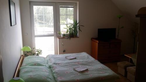 Guest House Chalupa U Pramene - фото 14