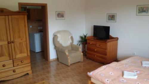 Guest House Chalupa U Pramene - фото 16