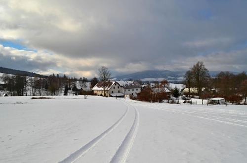Guest House Chalupa U Pramene - фото 6