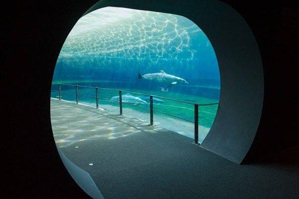 Loft in San Lorenzo - фото 2
