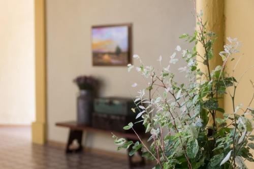 Hotel La Casona de Don Jorge - фото 6