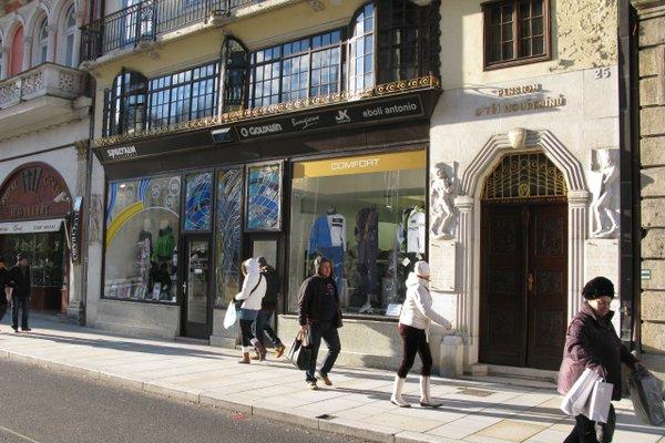 Residence Goethe U Tri moureninu - фото 21