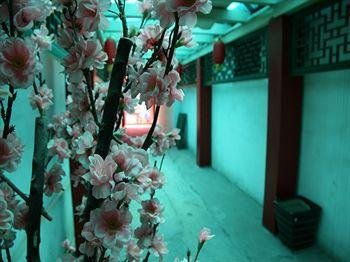 Beijing Yue Bin Ge Courtyard Hotel - фото 18