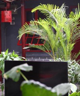 Beijing Yue Bin Ge Courtyard Hotel - фото 21