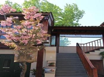 Jingshan Garden Hotel - Forbidden City - фото 19