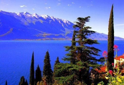 Hotel Villa Dirce - фото 15