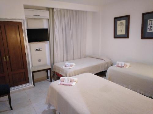 Hotel Nuevo Ara - фото 1