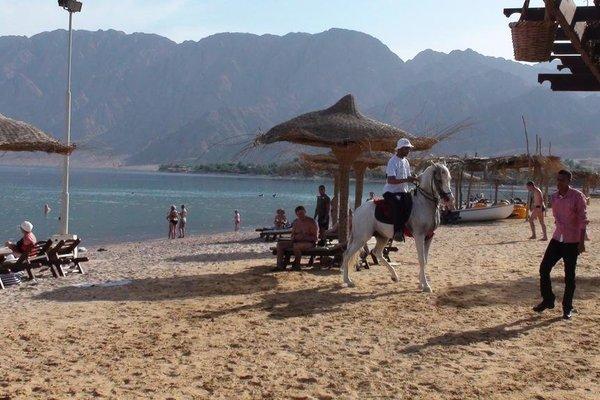 Al Sayadeen Village Red Sea Riviera - фото 15