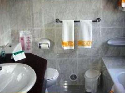 Hotel del Tarter - фото 7