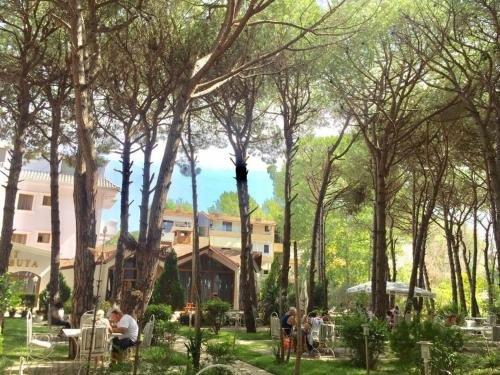 Hotel Pishat e Buta - фото 16