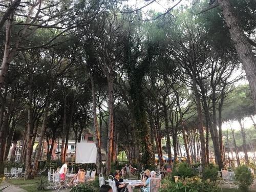 Hotel Pishat e Buta - фото 17
