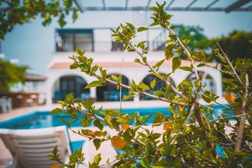 Chrysland Hotel - фото 20