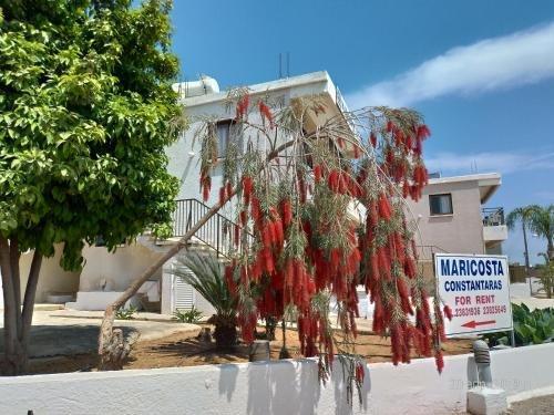 Maricosta Apartments - фото 23