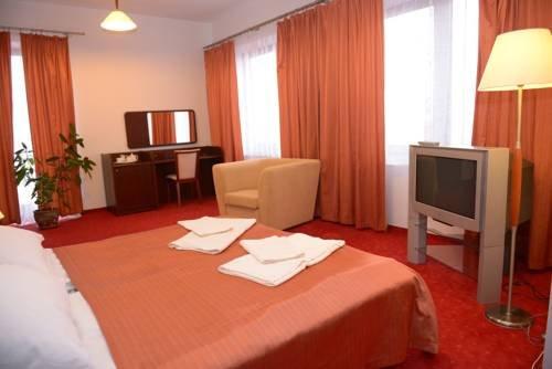 Hotel Pod Debami - фото 10