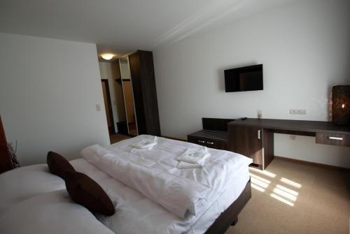 Hotel Hanzel - фото 1
