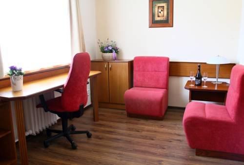 Hotel Baltaci Zlin - фото 9