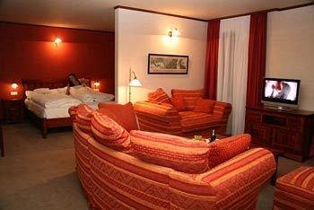 Hotel Zlaty Lev Zatec - фото 1