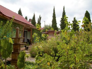 Фото отеля Zolotoj Drakon Guest House