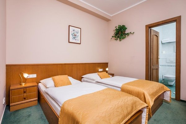 Hotel Jelinkova vila - фото 4