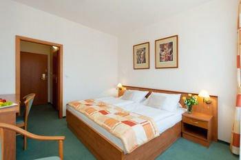 Hotel Vladimir - фото 1