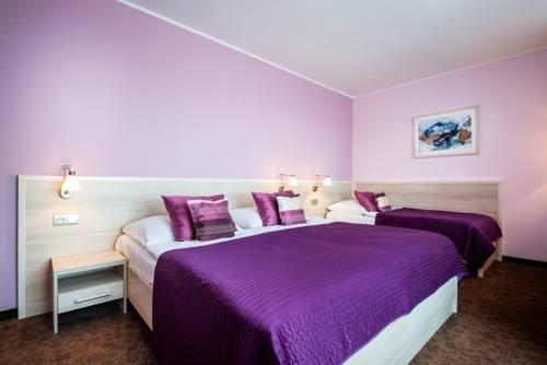 Hotel Mlynska - фото 4