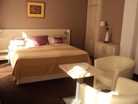 Hotel Mlynska - фото 9