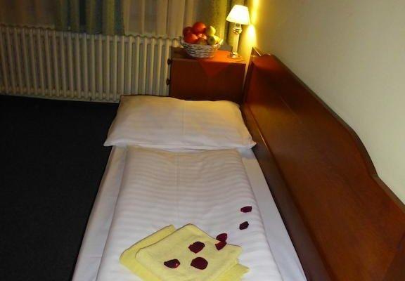 Hotel Korunni Princ - фото 11