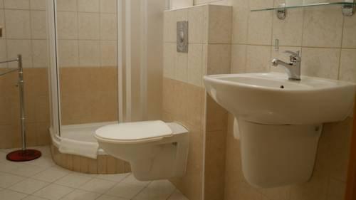 Hotel Bily Konicek - фото 11