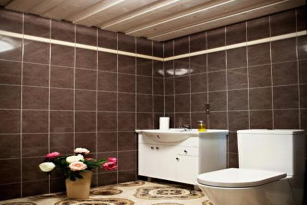 Hamsaare Guesthouse - фото 4