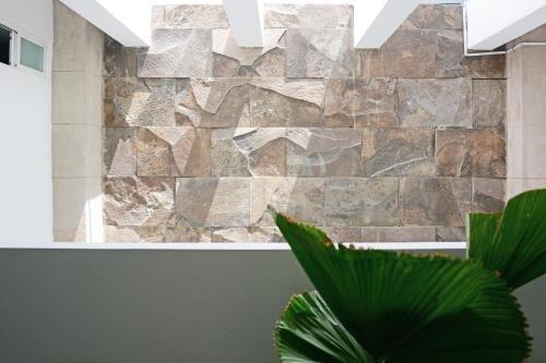 Suites 259 Condesa - фото 23