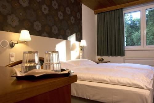 Hotel Srni depandance - Sumava - фото 1