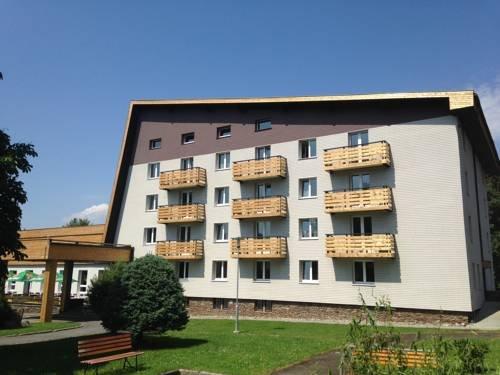 Hotel Srni depandance - Sumava - фото 7