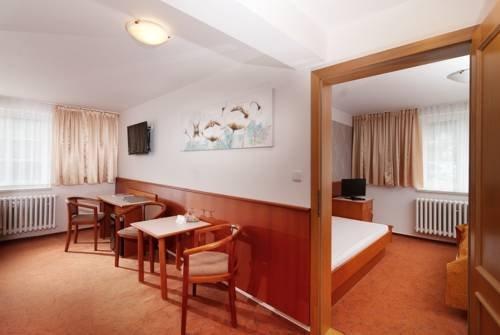 Hotel Snezka - фото 4
